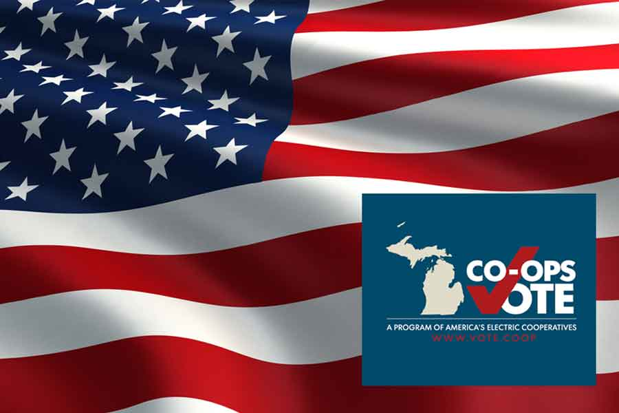 American Flag with'co-ops vote' caption