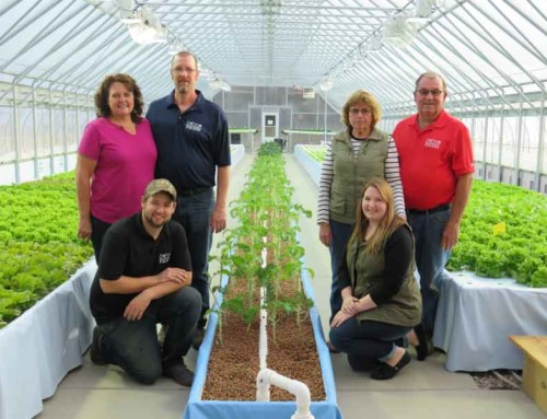 The Miller Family Farm: A Leap Into Uncharted Waters