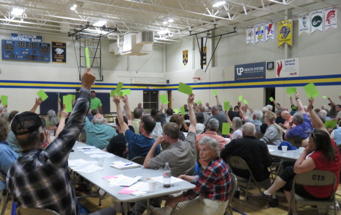 Voting at the meeting